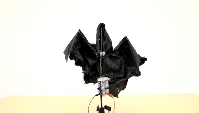 bat_umbrella