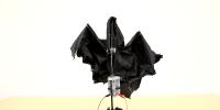 thumb-bat_umbrella